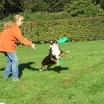 Frisbee01